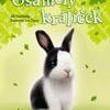 Příběhy se šťastným koncem – Osamělý králíček